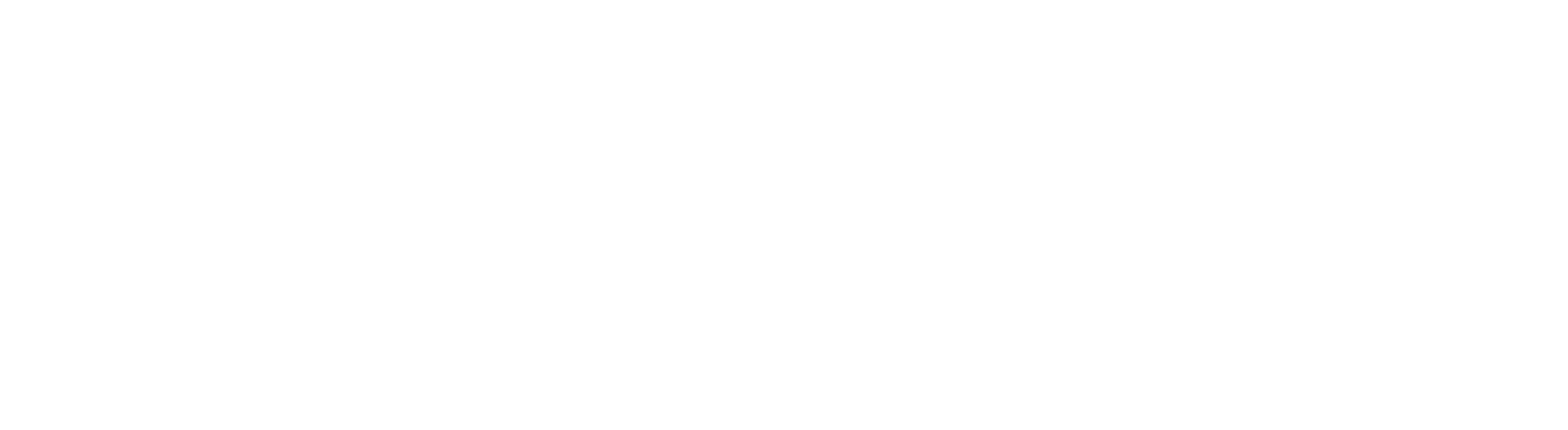 Visa Authority